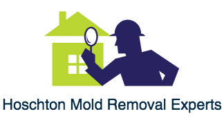 Hoschton Mold Removal | Testing